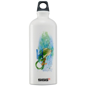 1.0L Swiss made Sigg Water bottle $27.99 only!